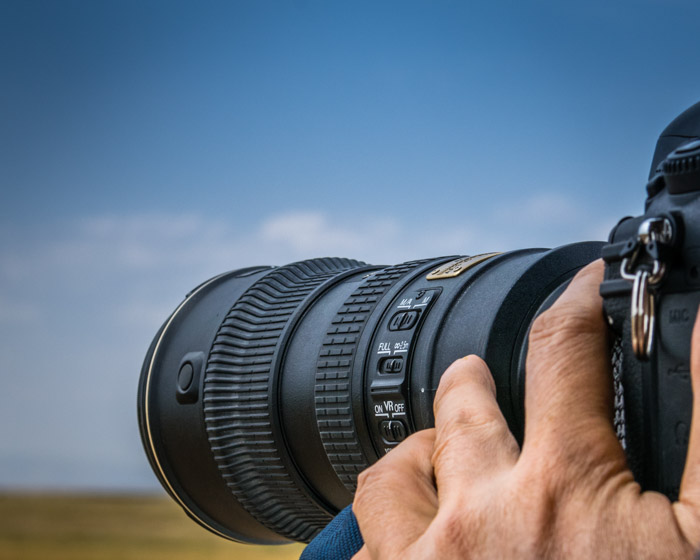 A telephoto lens gets you close to the action without putting you in harms way for stunning wildlife photography shots