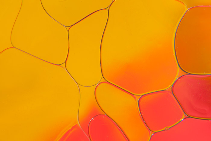 Close up photograph of yellow and pink patterns with oil and water. Abstract photography ideas.