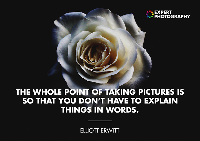 Elliott Erwitt Photography Quote