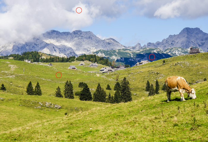 A landscape image of a cow grazing in green fields with mountainous background on a bright day. Using a light meter to check dark and light areas.