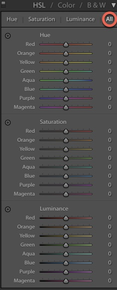 Screenshot of Lightroom interface with toggles
