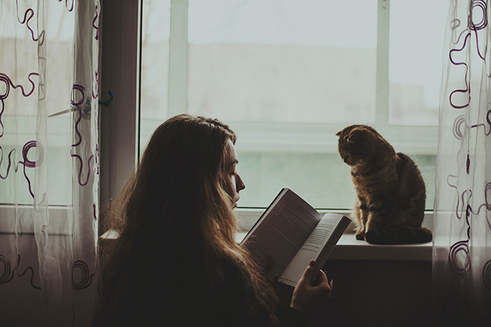 ethereal photo of a girl reading to her cat who sits on the windowsill, natural light portrait photography