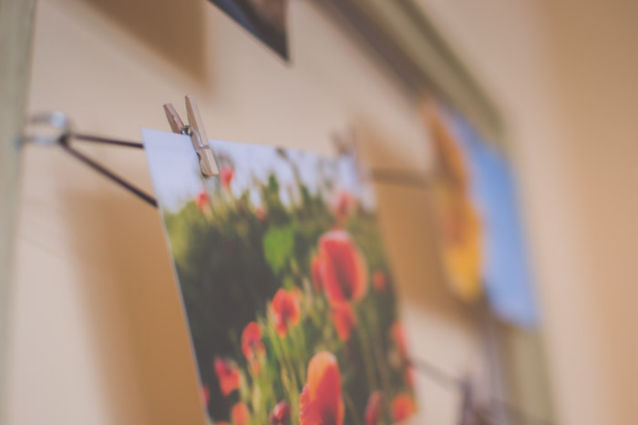 A photograph of red flowers hanging by small wooden pegs on the wall. creative photography ideas.