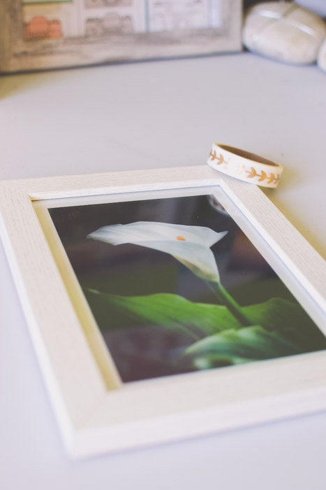 A photograph of a white lily in a white frame. Photography ideas.