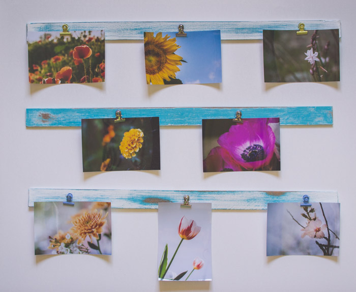 A unique photo gift display of 7 flower photographs hanging on green boards. Creative photography ideas.