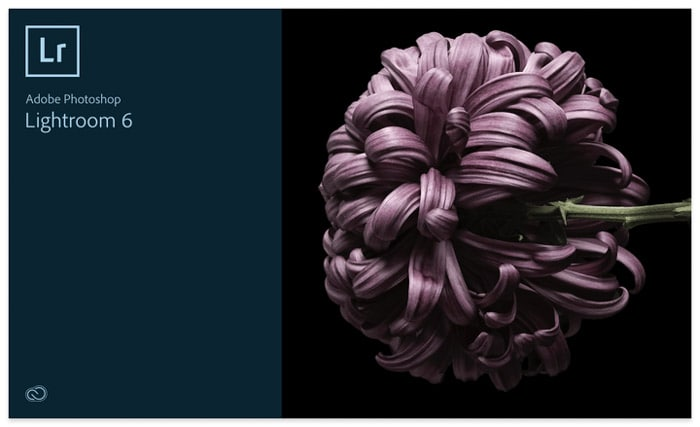 Screenshot of Adobe Lightroom editing software. Lightroom vs Photoshop
