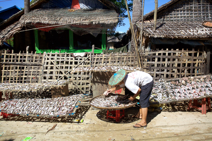 Travel photography of a woman cleaning fish in Myanmar. Street photography accessories.