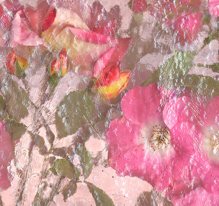 """""""Rose Bouquet"""" - a collection of pink flowers canned under glass"""