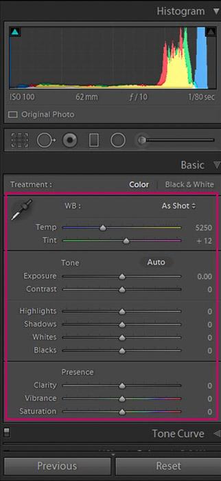 Screenshot of Adobe Lightroom global adjustments panel for editing flower photography