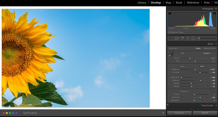 Screenshot of Adobe Lightroom spot removal tool for editing flower photography - final image - Lightroom editing tips