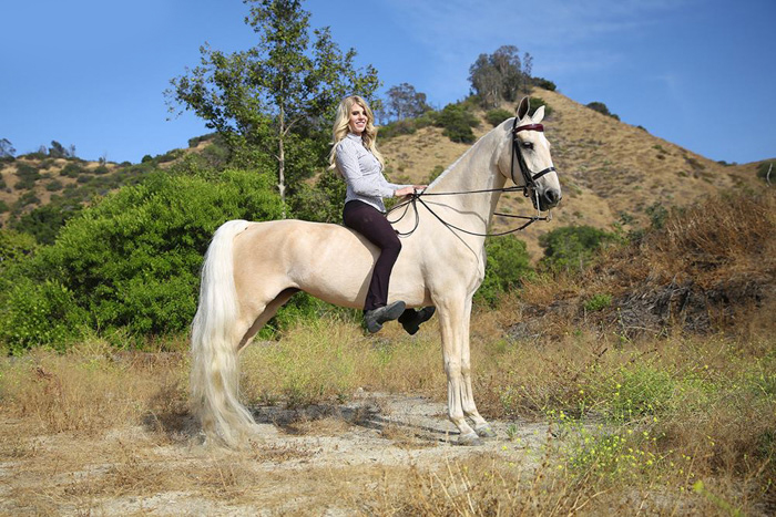 Majestic portrait of a girl on a light colored horse standing outdoors - horse photography tips