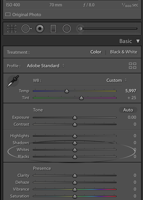 Adjusting the black and white sliders in Lightroom