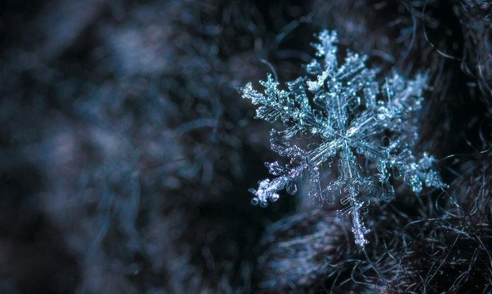 Macro image of snowflake