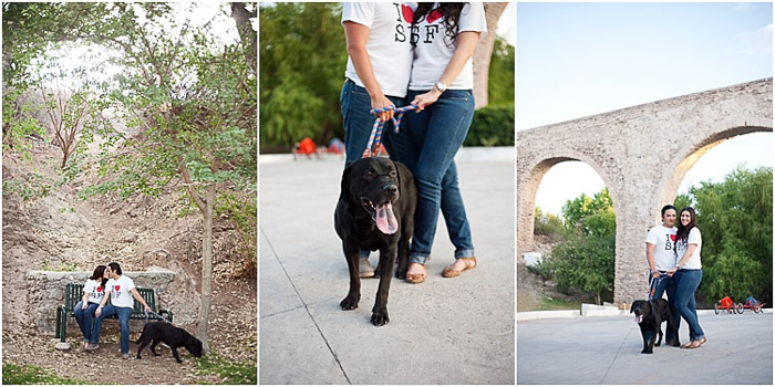Bright and airy engagement photography triptych of the couple embracing in a garden with a dog