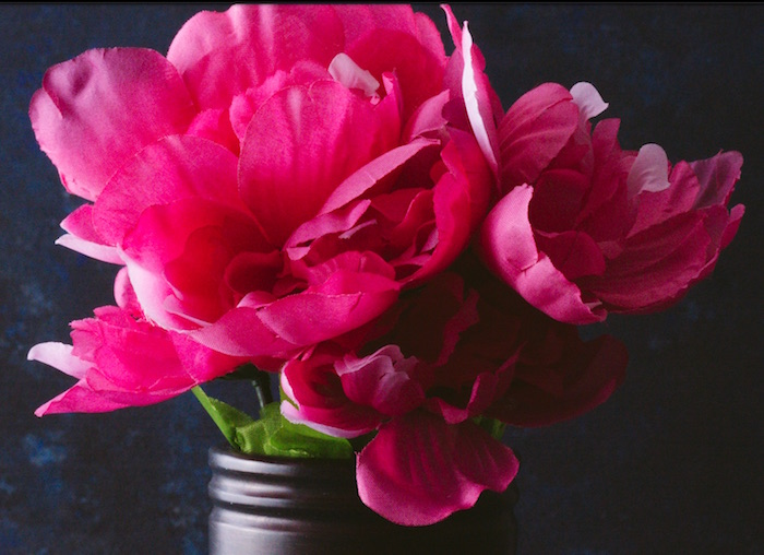 Fabric pink flower still life photography