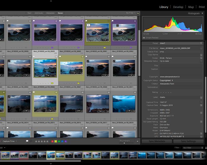 Screenshot of Lightroom medadata of images