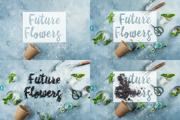 4 photo still life photography ideas grid with the text 'future flowers' and various arrangements of a flower pot and flowers