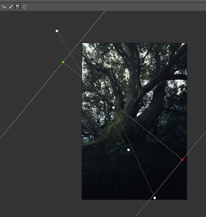 Screenshots of post process tree images in Photoshop