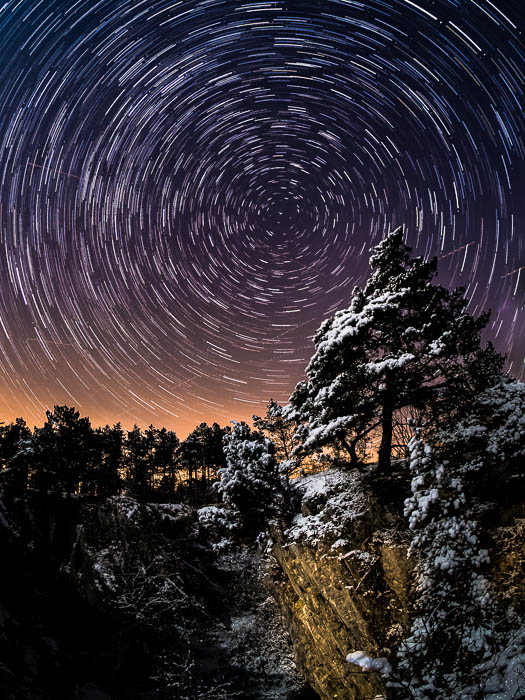 Stunning night sky photography shot of a pine tree in the foreground and circular star trails in the background