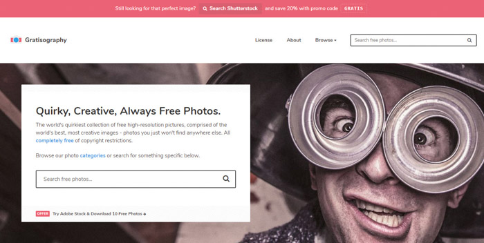 Screenshot of Gratisography homepage/search bar - Best Stock Photo sites