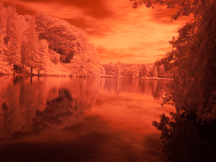Bright orange tinted photo of a pond in a popular family park near Brussels.