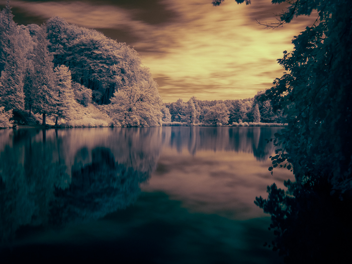 The final image of the edited infrared photography of a pond in Belgium