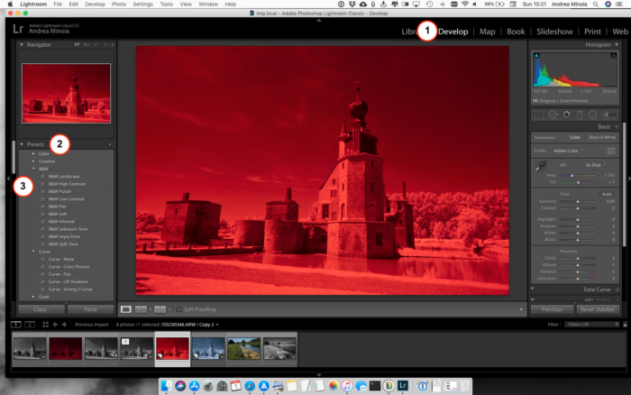 Screenshot of an infrared image in the preset menu in Lightroom Develop Module.