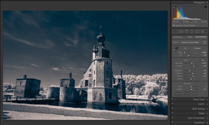 Screenshot of editing infrared photography