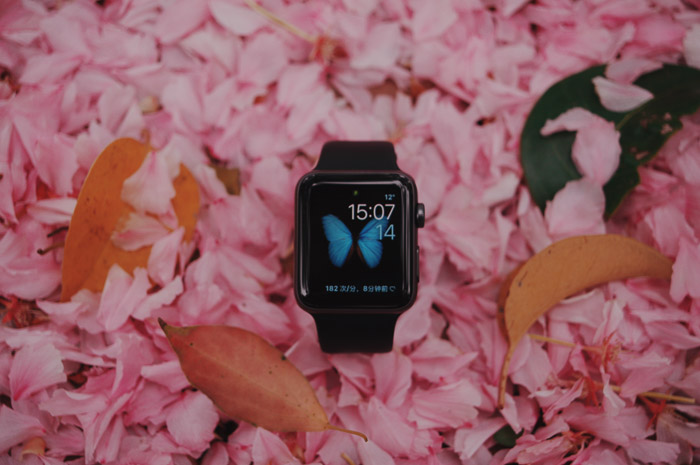 A product photography styling example of a digital watch displayed on pink rose petals