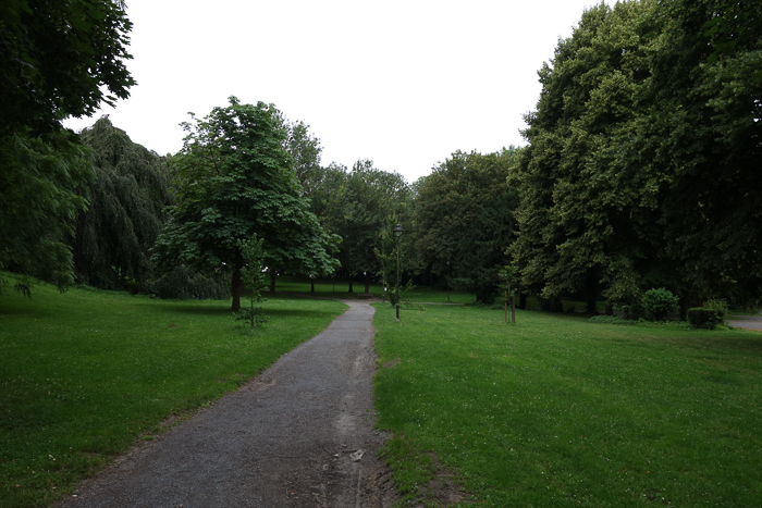 A green park on an overcast heavy day, suitable for using the overcast-5.6 rule.