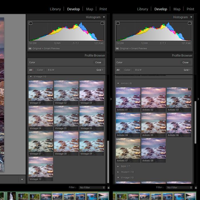 Screenshot of new profiles in Lightroom