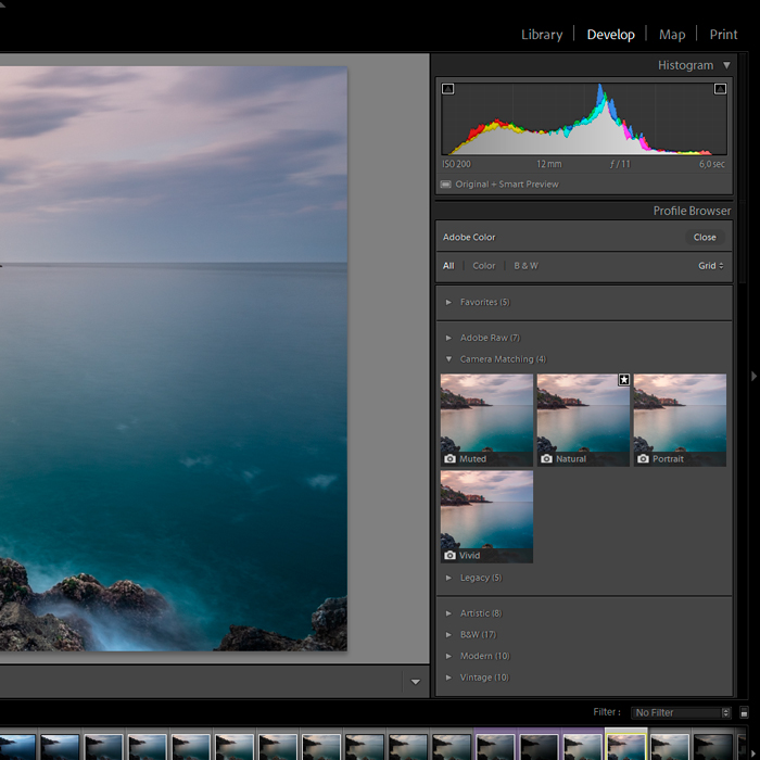 Screenshot of new camera Profiles in Adobe Lightroom for editing travel photography.