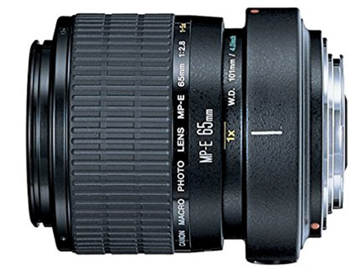 Canon MP-E 65mm f/2.8 1-5X lens on white background