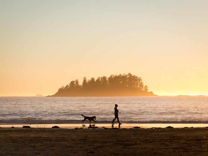 beautiful beach scene at golden hour