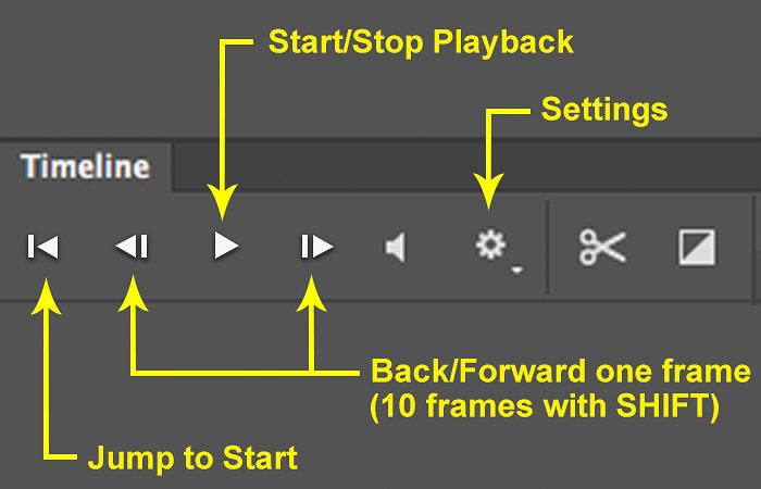 Screenshot of using playback menu to make a time lapse in Photoshop