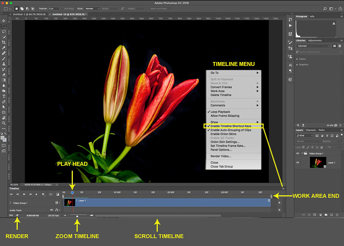 Screenshot of timeline menu used to make a time lapse in Photoshop