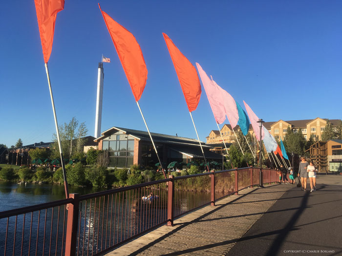 A line of brightly colored flags by a bridge, taken with iPhone camera