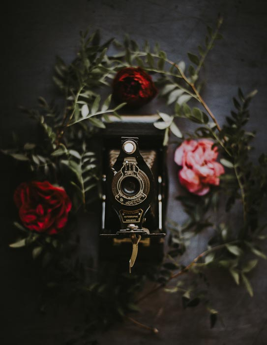 A dark and moody product photography shot of a film camera surrounded by flowers