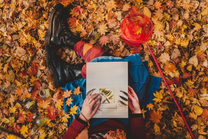 A draemy overhead shot of a person reading a book white sitting among autumn leaves