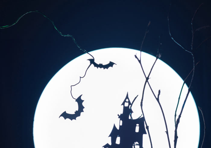 Close up of spooky Halloween silhouettes for a still life photo