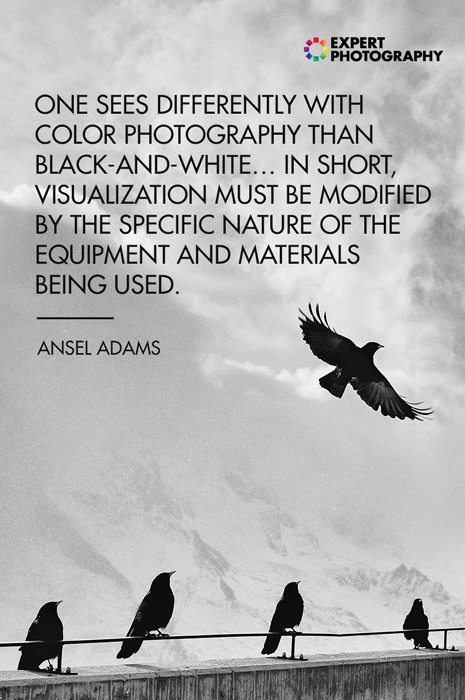 A photo of birds perched on a wall overlayed with black and white photography quote from Ansel Adams