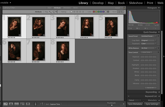 Screenshot showing how to apply Lightroom presets to many images at once