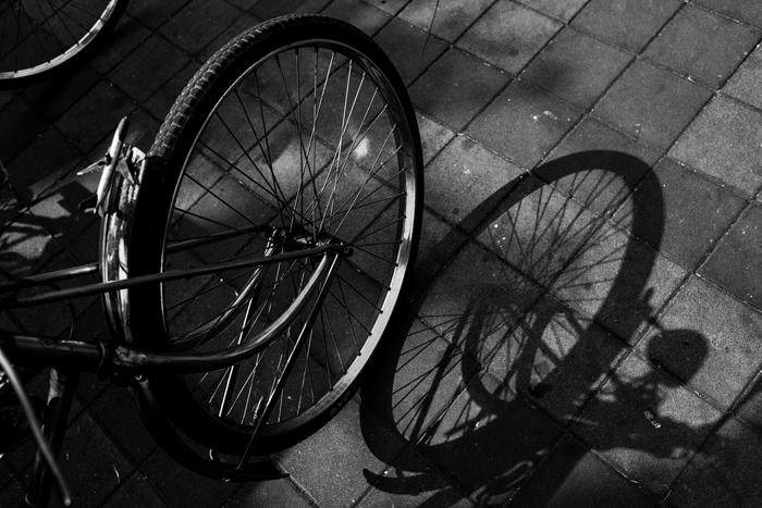 Una foto en blanco y negro de una rueda de bicicleta y su sombra.