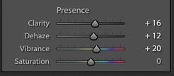 captura de pantalla del ajuste de la presencia de una imagen en Lightroom para la edición de fotografías de productos