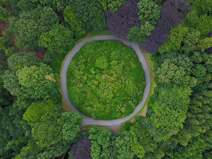 Birds eye view of a roundabout in the forest shot with a drone