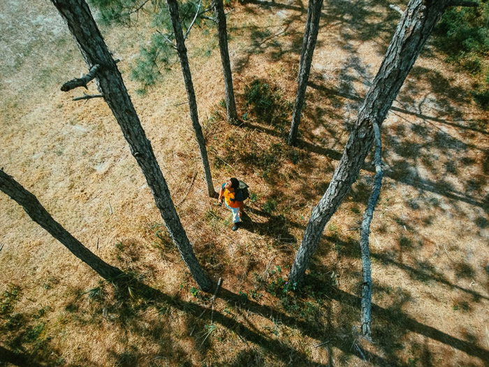 Overhead shot of a man walking through a forest - shadow photography