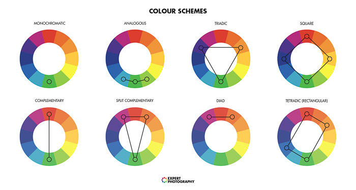 A diagram explaining color theory for better food photos