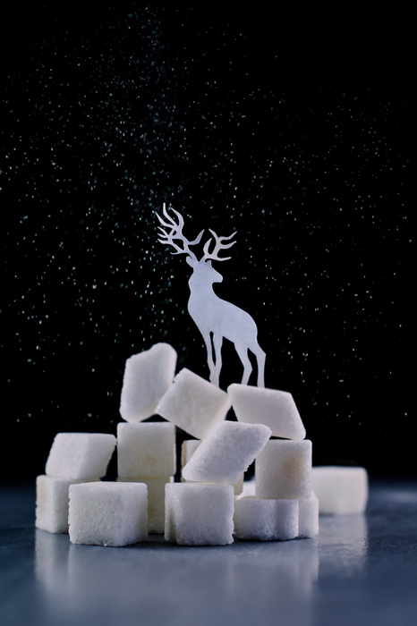 A magical Christmas photography still life