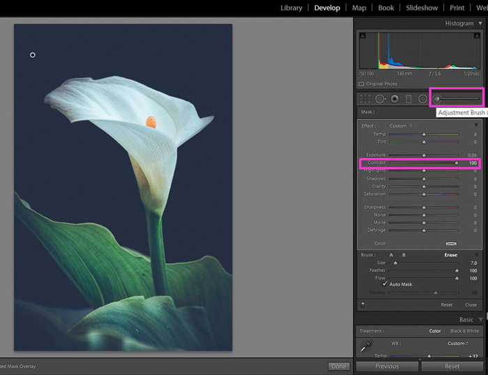 Screenshot of using the contrast brush in Lightroom for contrast in photography