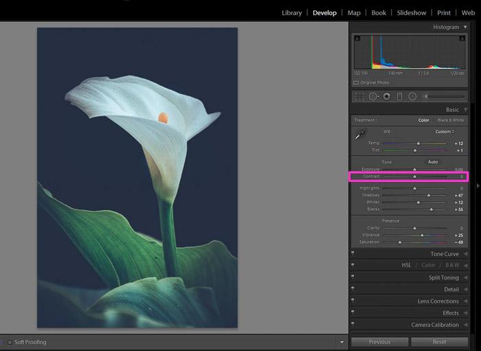 Screenshot of adjusting contrast in Lightroom